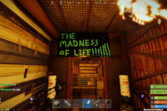 Madness of Life